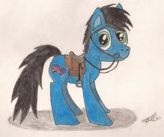 Your Noble Steed Awaits. by CobaltBrony