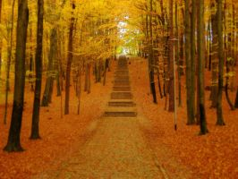 -+-Kingdom of Autumn-+- by TalviEnkeli