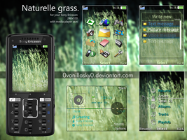 Naturelle Sony Ericsson Theme by 0VanillaSky0