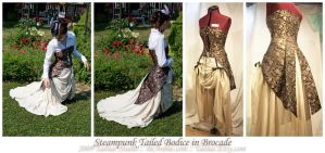 Steampunk Tailed Bodice v3 by taeliac