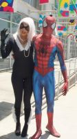 Black Cat and Spider-Man at LB Comic Con 2013 by trivto