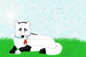 lying in the grass by nessylucy