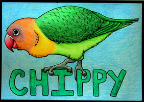 Chippy by TornFeathers
