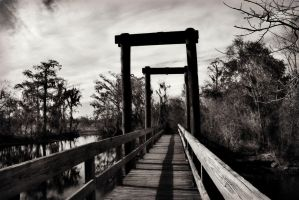 Across the Dismal Swamp by SalemCat