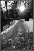 snow flare mono by rorshach13