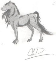 Pencil Shaded Horse by PaintedSundance