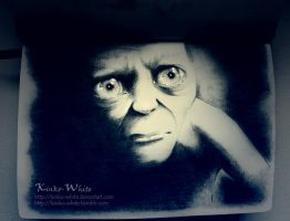 Smeagol by Kinko-White