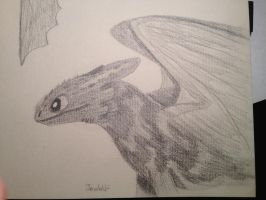 Toothless by JemWolf