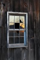 Country Window by jeorban