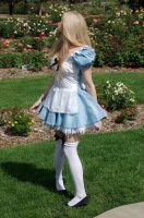 Alice in Wonderland 7 by the-little-skylark