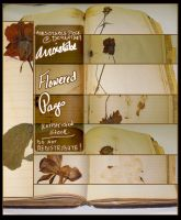 Flowered Pages Stock Pack by ArrsistableStock