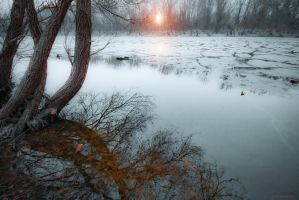 frozen world by ildiko-neer
