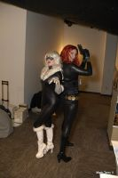 Black Cat and Black Widow by SubconsciousDreaming