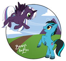 Bronys for Life by AcidicSubstance