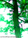 Shining Green Tree by Clover0Project