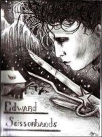 Edward scissorhands by Xtell
