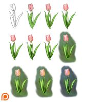 Tulip Tutorial by Namwhan-K