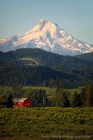Mt Hood and Barn by La-Vita-a-Bella