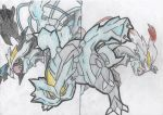 Kyurem and his forms by Elise-the-Hedgehog98
