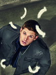 SPN - raining feathers by LindaMarieAnson