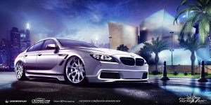 BMW 6-Series Gran Coupe (2013) WTB2012 by brianspilner