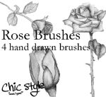 Hand Drawn Rose Brushes by Lovegreen13