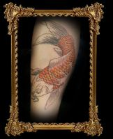 koi lining Trainee 2nd session by heartsandanchors
