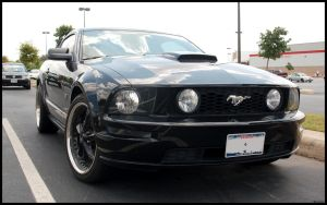 Black Mustang GT 1 by MrDahk