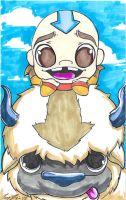 Aang on Appa by ckeiji