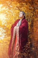 The Lord of the Ring cosplay. Elrond by Mellefuielle