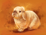 Gold rabbit by AlaxendrA