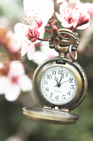 Time For Spring by MadSubstance