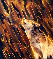 Spirit of the Wolf by maagg