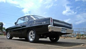 1967 Chevy Nova Rear by Mister-Lou
