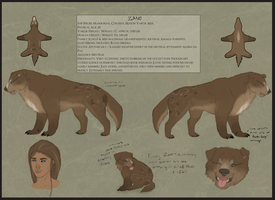 Official Reference: Zane by Umbrafen