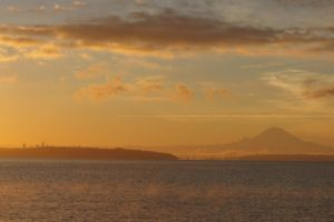 Puget Sound1401.04 by Dilong-paradoxus