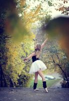 Ballet by PhotoYoung