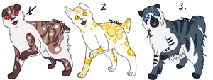 Bobtail Cat Adoptables [CLOSED] by Squidoptables