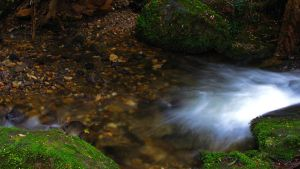 Cement Creek 02 by Dryad-8
