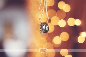 Hanging in Bokeh by FDLphoto