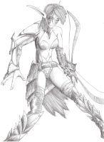 Night Elf Huntress by tallguy59