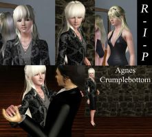 Remembering Agnes Crumplebottom by SuperMeja