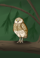 Finished Owl by SinLigereep