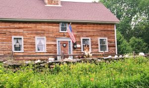 America's Home by GoldenBeauty
