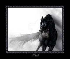 Black by Misted-Dream