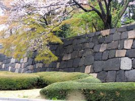 Imperial Palace Wall by thecomingwinter