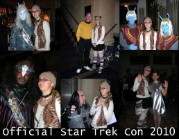 Star Trek Con 2010 Collage by ShellMinded