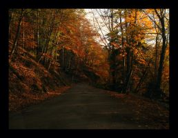 Autumn... what else? by lorenzo84