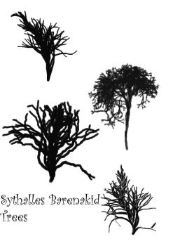 Sythalles Barenakid Trees by Sythalle