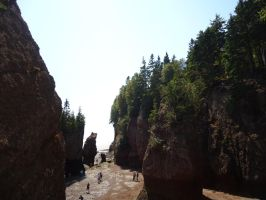 Hopewell Rocks by 2ndKeeper